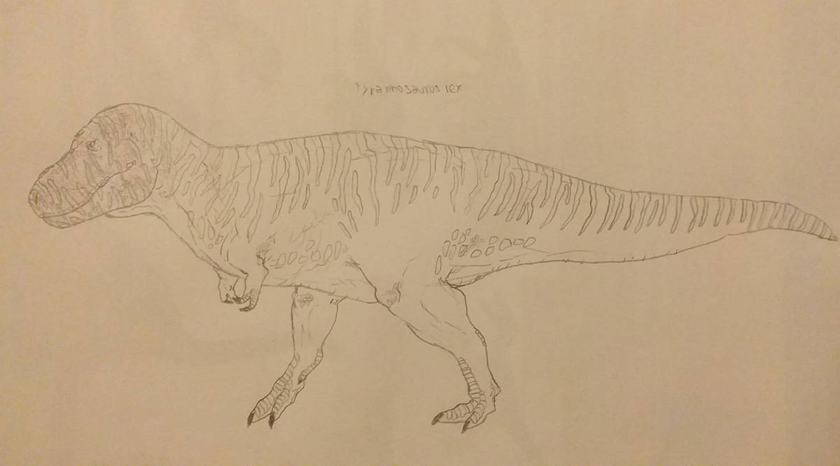 WIP for my new T-Rex  by RaresAnimals