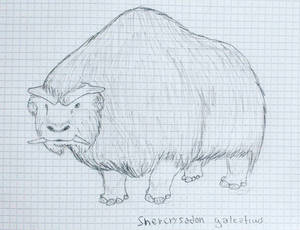 Future Animal: Shercrysadon galeaticus