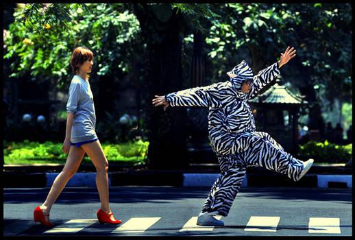 and the zebra said :