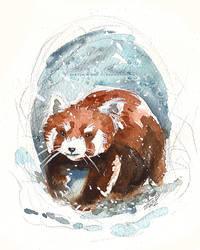 Red Panda by Tsubasa-No-Kami