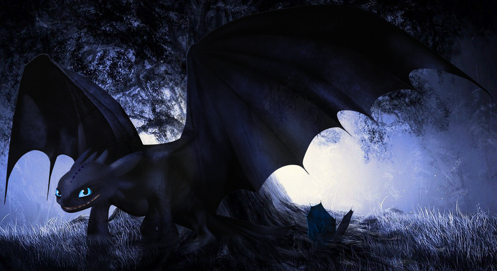 HTTYD::Young NightFury edit by XxTheDragonTrainerxX on DeviantArt