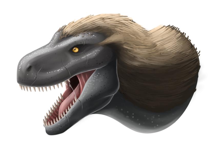 Tyrannosaurus head by Lordstevie