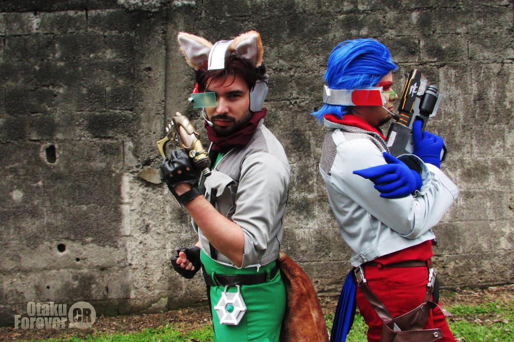 Fox and Falco by DallenaD