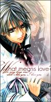 What means love? - Zero 2 by AkikoMchan