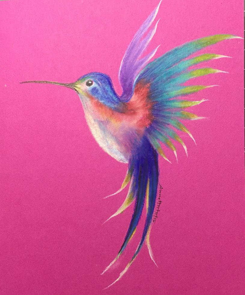 Hummingbird by 8Annett8