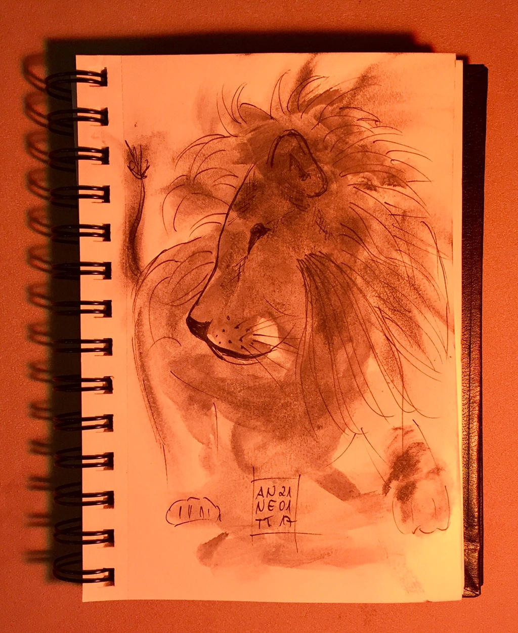 The Lion by 8Annett8