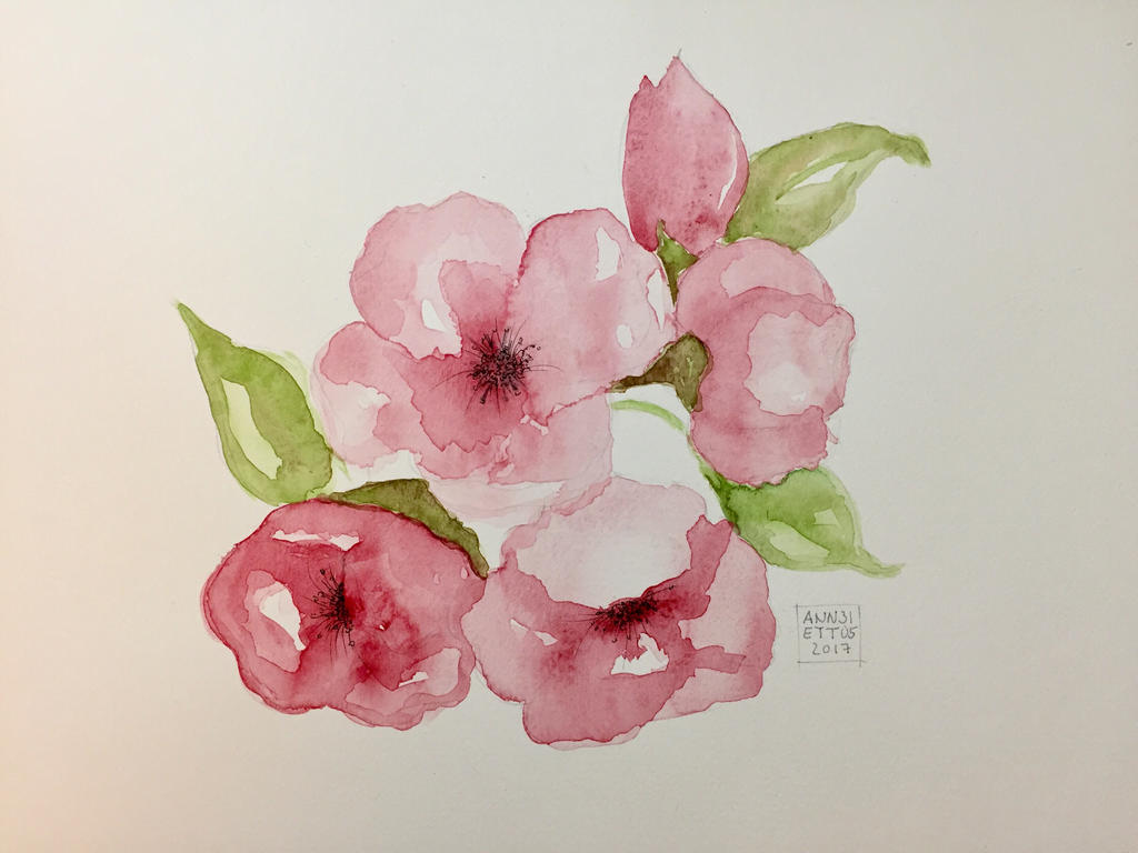 Pink Watercolor Flowers by 8Annett8