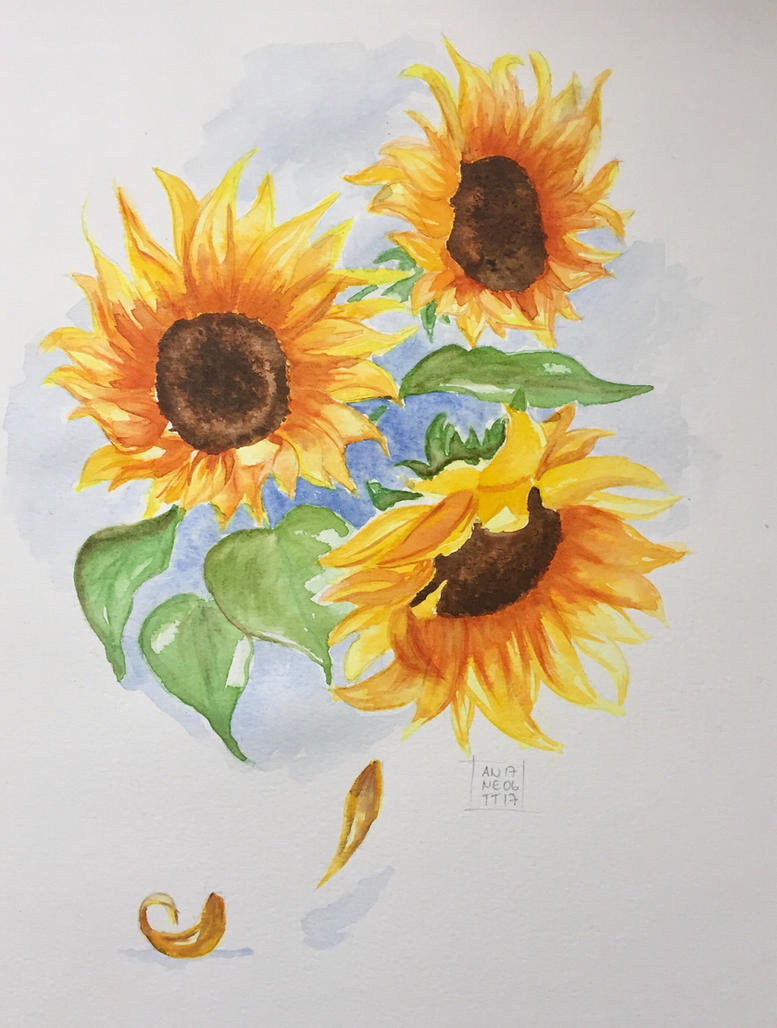 Sunflowers by 8Annett8