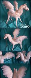 Shiro, Prince of the Sky by DarrinIthamar