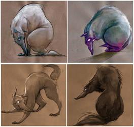 Wolfs concept