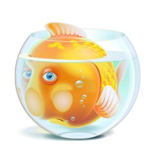 Fish by bayar07