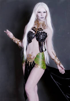 cosplay goddess Shilen.not finished. Lineage II