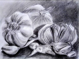 Garlic graphite study
