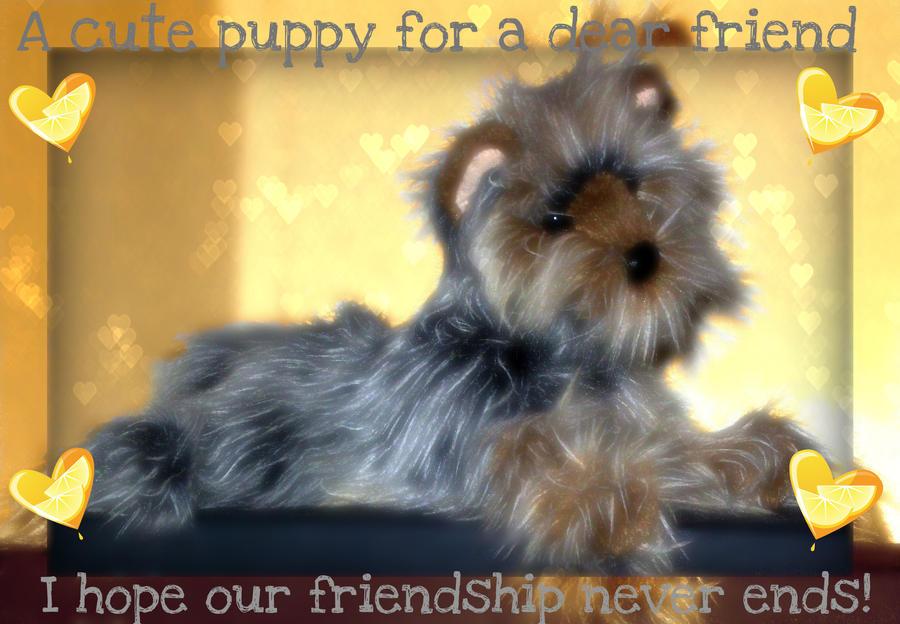 Valentine Puppy by bewilderedconfused