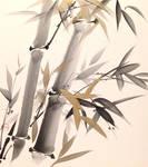 Sumie bamboo