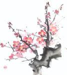 [Sumie] Plum (shikishi)