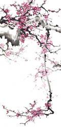 [Sei] Meihua by bsshka