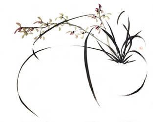 [Sei] Orchid by bsshka