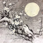 [Sei] Meihua under moonlight