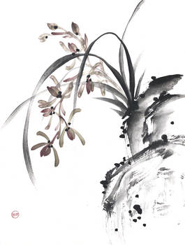 [Sumie] Orchid