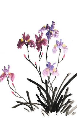 [Xieyi] Irisis