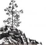 [Sumie] Pine-tree sketch