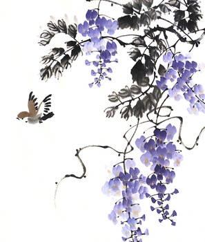 [Xieyi] Sparrow and wisteria