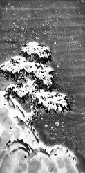 [Sumie] Pine-tree under the snow