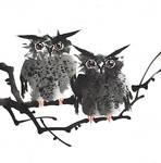 [Xieyi] Owls
