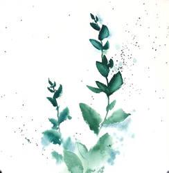 [Watercolor] Eucalyptus