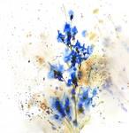 [Watercolor] Blue flowers