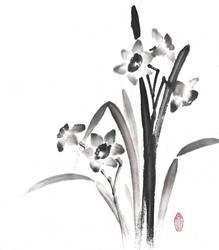 [Sumie] Narcissus