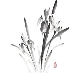 [Sumie] Irises