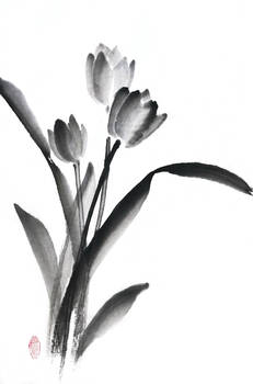 [Sumie] Tulips