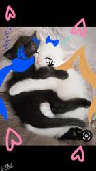 Kitten Lovers by PrincessMagicRose