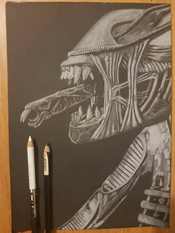 Another alien xenomorph  by yorkshirepudding1990