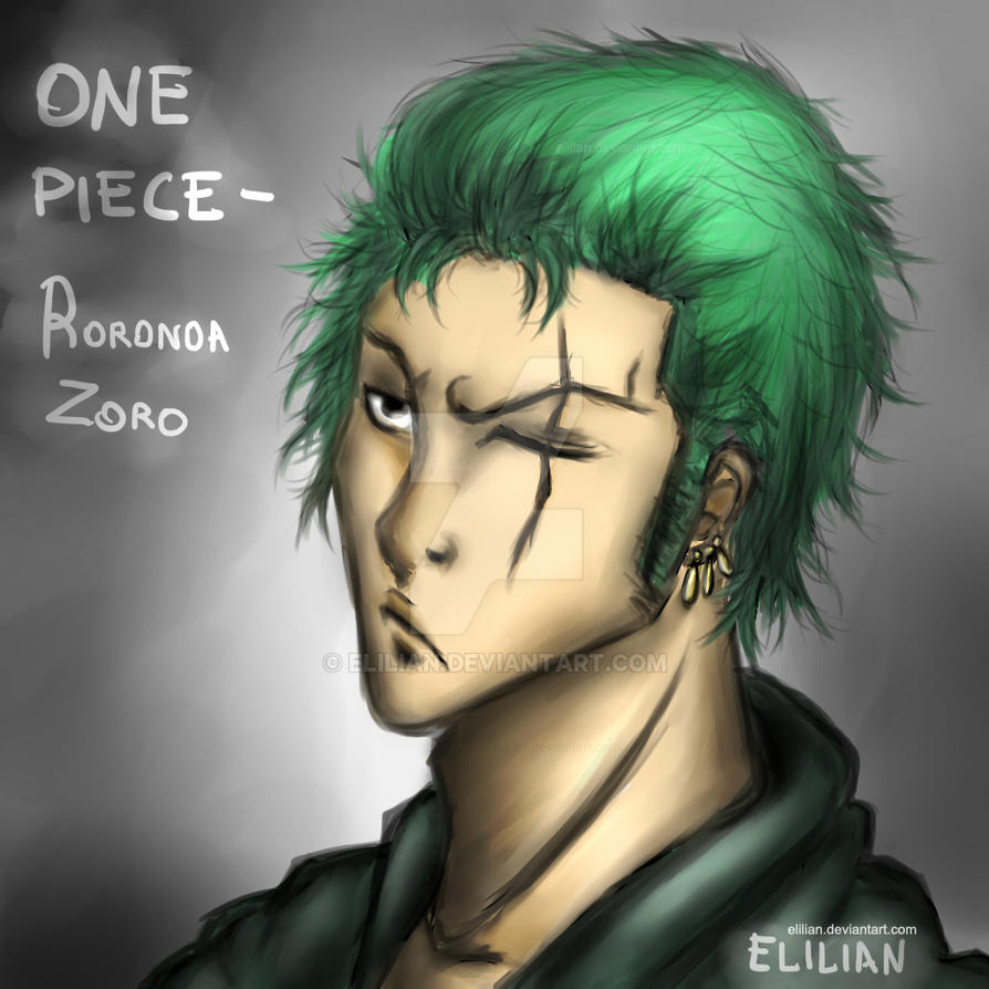 One Piece - Roronoa Zoro (Two years after) by Elilian on ...