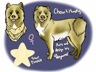 Chusky Custom Design by Haagen-Daagen