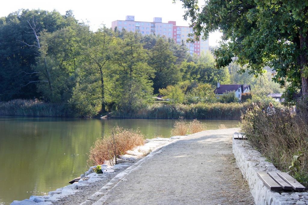 A way around a pond by Hrasulee