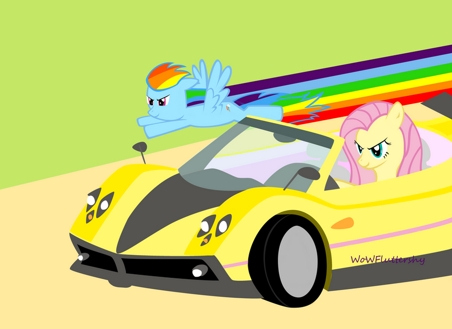 Fluttershy vs. Rainbow Dash by WoWFluttershy