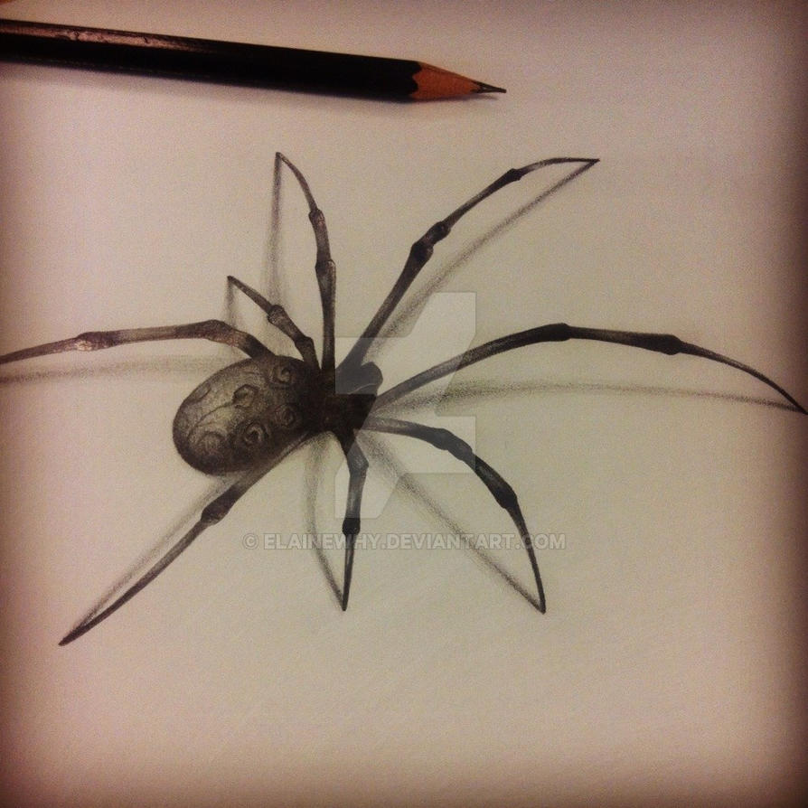 3d spider by elainewhy
