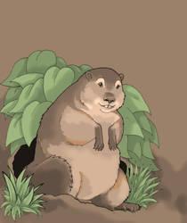 Woodchuck by Saevus