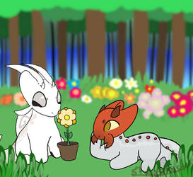 Gift #7: White Garden Snail and Grub
