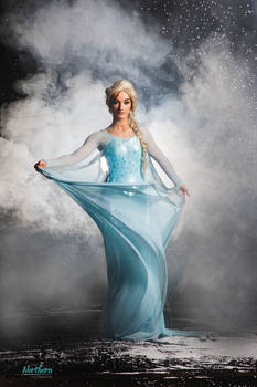 Elsa - Cosplay - The Northern Costumiers