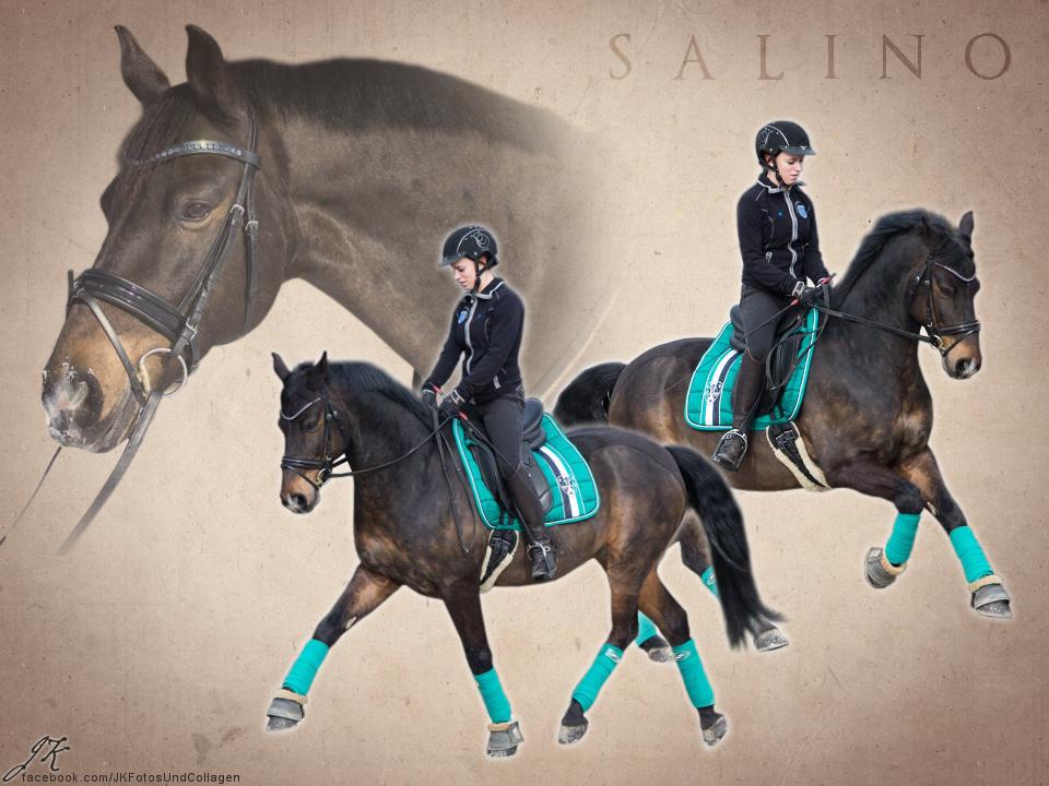Salino by michelle222
