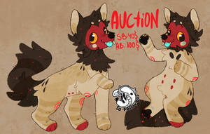 AUCTION (open) by so-prxtty-odd