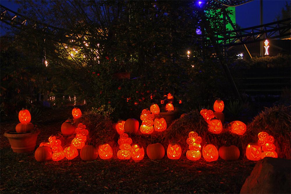 Pumpkin by chevyhax