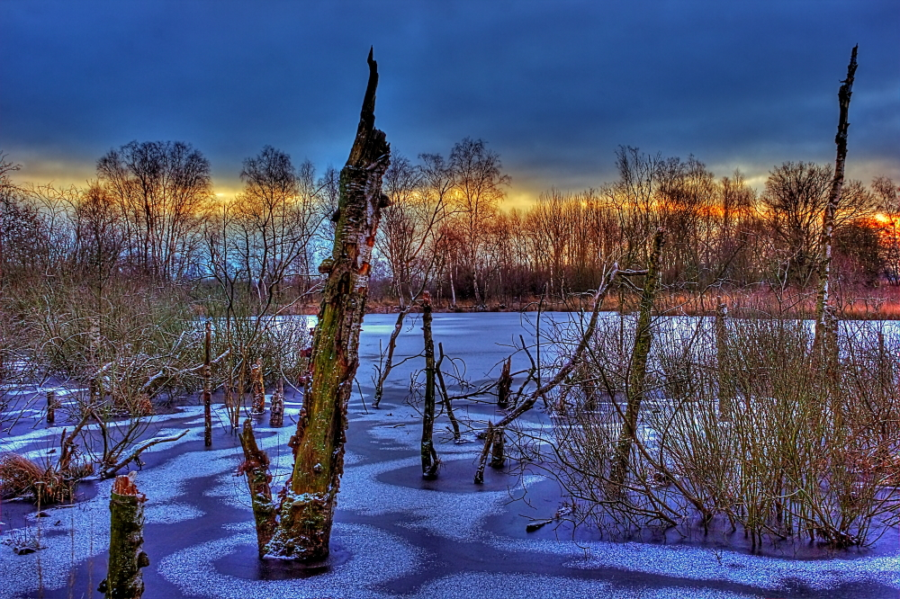 Broken Trees In Frozen Lake by chevyhax