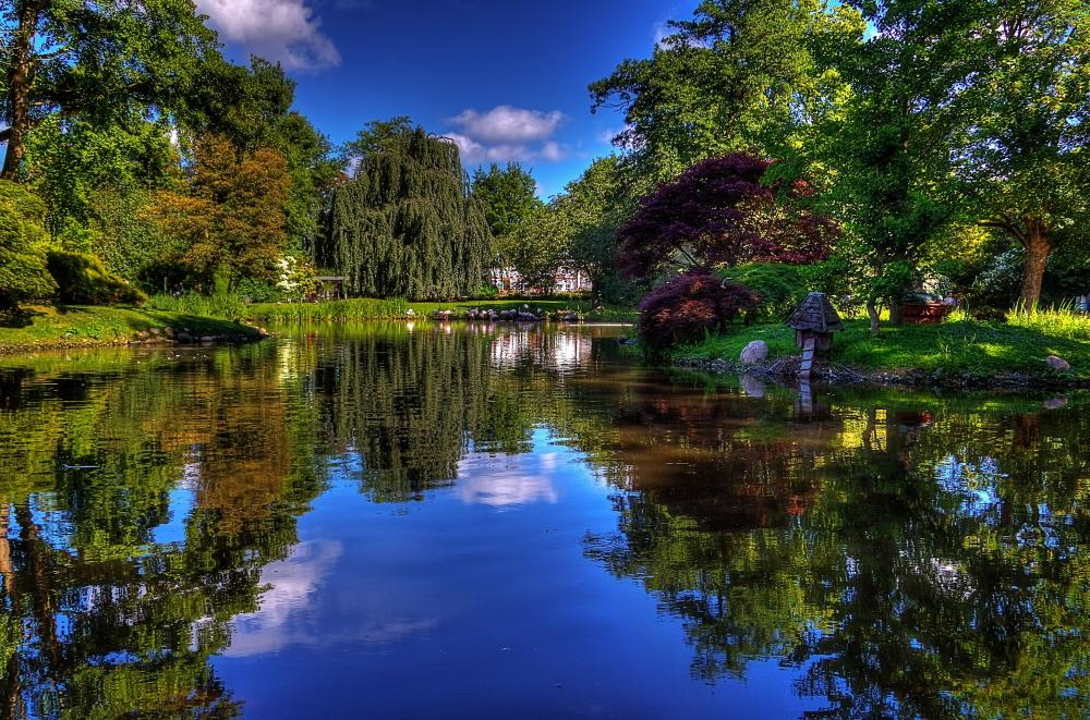Pond by chevyhax