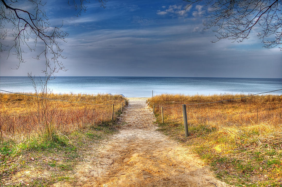 Path by chevyhax